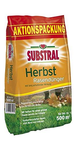 Substral 8243 Herbst Rasendünger f 500 m² - 125 kg