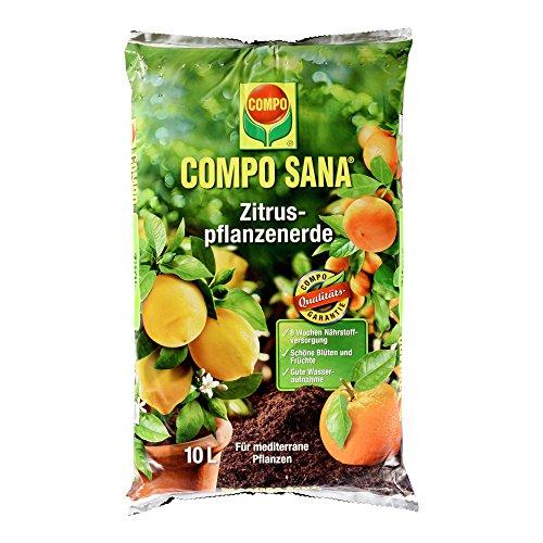 COMPO SANA Zitruspflanzenerde mit 8 Wochen Dünger für alle Zitruspflanzen und mediterranen Pflanzen Kultursubstrat 10 Liter