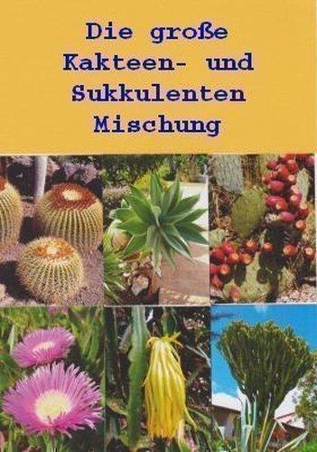 TROPICA - Grosse Kakteen-und Sukkulentenmischung - 150 Samen