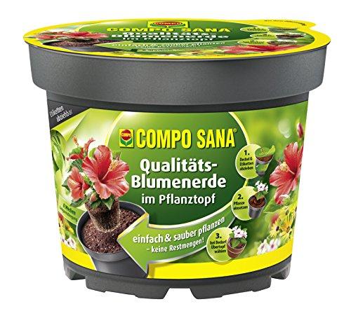 COMPO SANA Qualitäts-Blumenerde im Pflanztopf hochwertige Universalerde im Topf zum einfachen Bepflanzen und Umtopfen 35 L