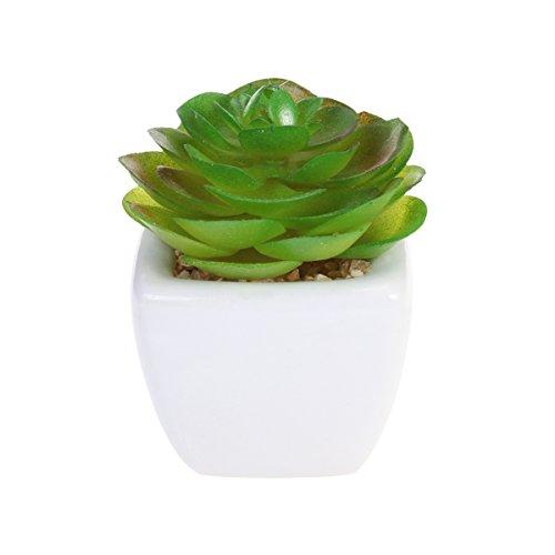 Mini Nette Topf Sukkulenten Pflanzen Arrangements Kleine Künstliche Gefälschte Pflanzen in Töpfe Container für Desktop Balkon Tisch Dekoration Round Rose