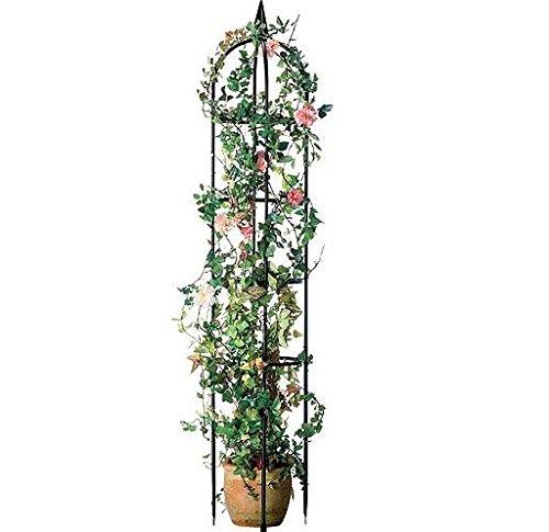 ABC Home Garden Pflanzenbogen  Rosenbogen  Rankhilfe Metall schwarz 240 cm H