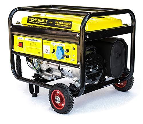 Stromaggregat Notstromaggregat Stromerzeuger Generator 3000W 230V 12V AVR 15L